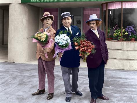 The Three Stooges: Three Dapper Dans Photo