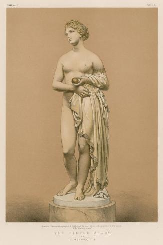 The Tinted Venus Giclee Print