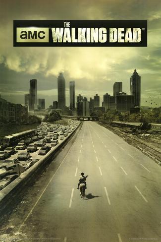 Resultado de imagem para the walking dead poster