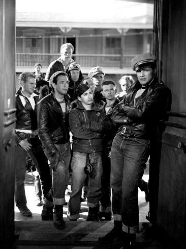 The Wild One, Jerry Paris, Alvy Moore, Marlon Brando, 1954 Photo