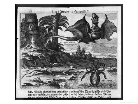 Flying Dragons' were Among the Weird Creatures Reported from the New World by Vespucci Impressão giclée