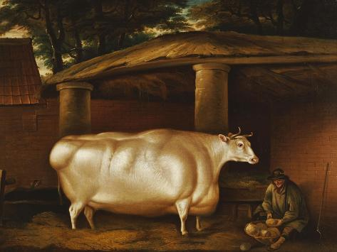The White Heifer That Travelled, with a Man Slicing Turnips in a Stable Yard, 1811 Giclee Print