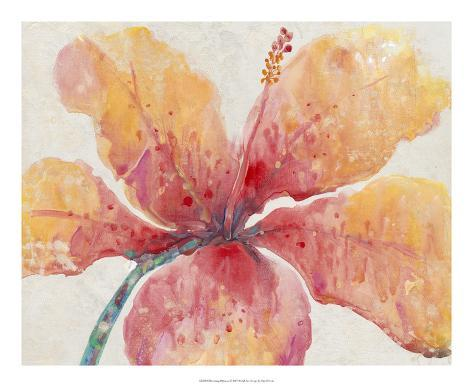Blooming Hibiscus Giclee Print