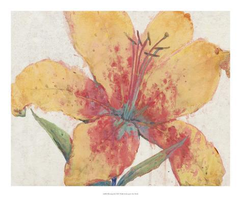 Blooming Lily Giclee Print