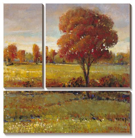 Field in Fall Canvas Art Set