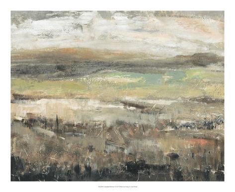 Grassland Showers I Art Print