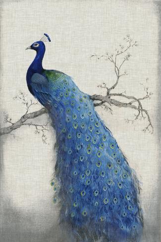 Peacock Blue II Art Print