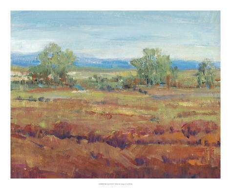 Red Clay II Art Print