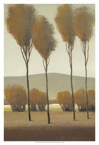 Tall Birches I Art Print
