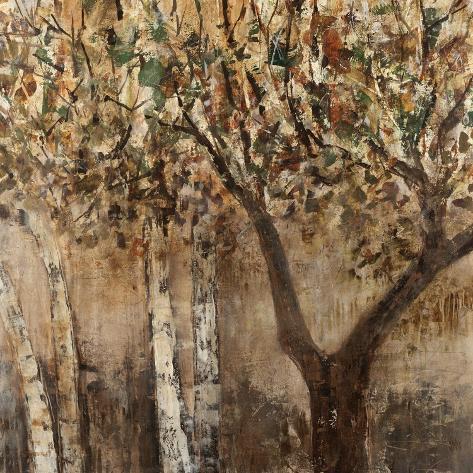 Tree Shade Giclee Print