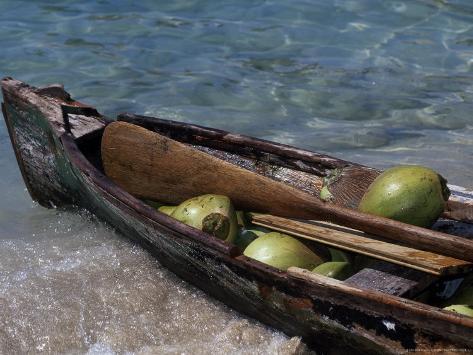 Coconuts in Canoe, Pequeno, Garifum, Cochino Photographic Print