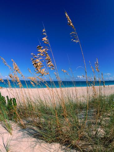 Grace Bay Beach, Turks & Caicos Islands Photographic Print