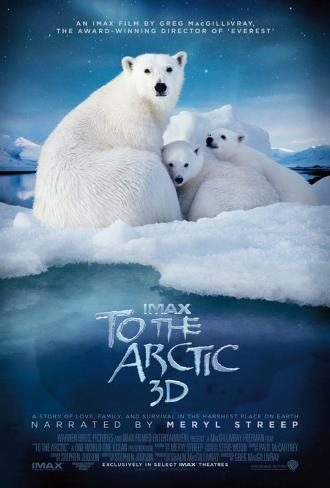To The Arctic 3-D Original Poster