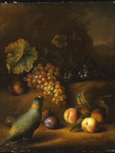 A Parrot with Grapes, Peaches and Plums in a Landscape Giclee Print