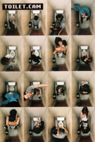 Toilet Cam (Bathroom Scenes) Art Poster Print Poster