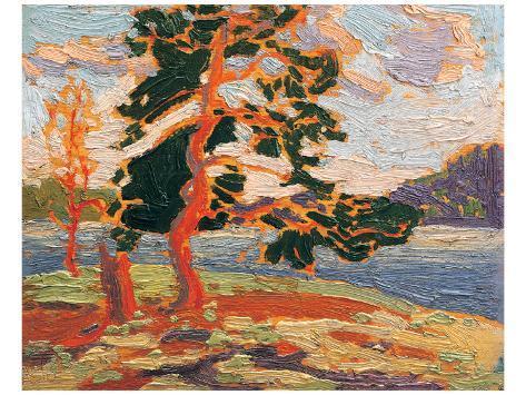 The Pine Tree Premium Giclee Print