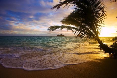 Sunrise At Lanikai Beach In Hawaii Impressão Fotográfica