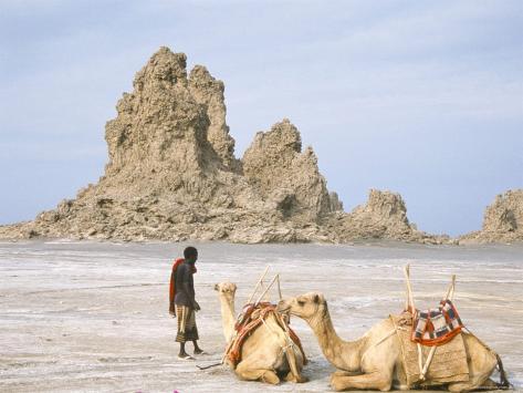 Tufa Towers at Lac Abhe, Afar Triangle, Djibouti Photographic Print
