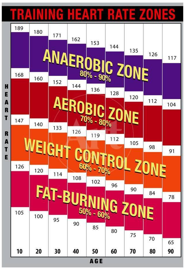 Training Heart Rate Zones Chart Bright Posters At Allposters