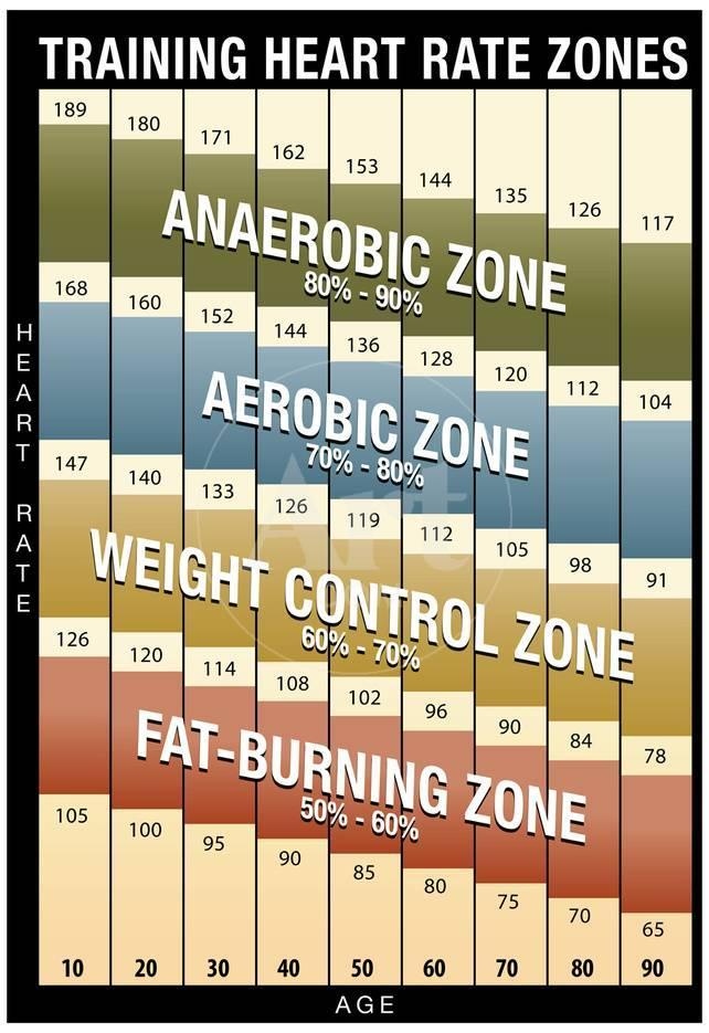 Training Heart Rate Zones Chart Modern Poster At Allposters