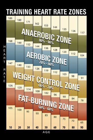 オールポスターズの training heart rate zones chart modern アート