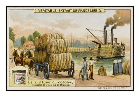 Transporting Bales of Cotton on Steamboats on the Mississippi River, USA Giclee Print