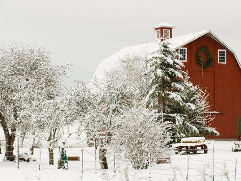 Red Barn in Fresh Snow, Whidbey Island, Washington, USA Photographic Print