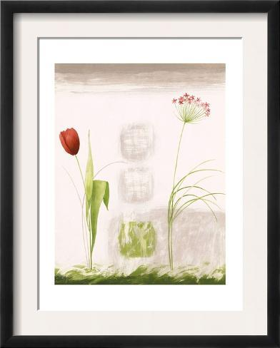 Tulip and Queen Anne\'s Lace Art - AllPosters.ca