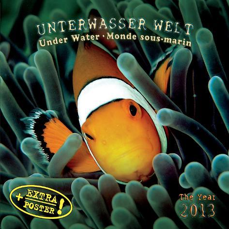 Under Water - 2013 Wall Calendar Calendars