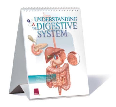 Understanding The Digestive System Educational Medical Flip Chart Flip Chart