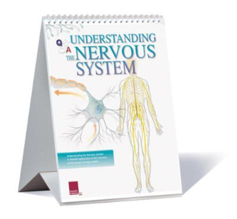 Understanding The Nervous System Educational Medical Flip Chart Flip Chart