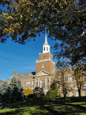 University of Cincinnati - McMicken Hall Through the Trees Photo
