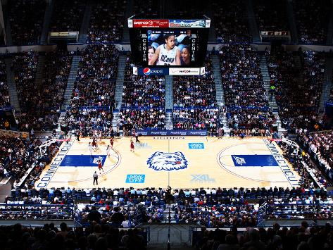 University of Connecticut - UConn Women's Basketball Photo