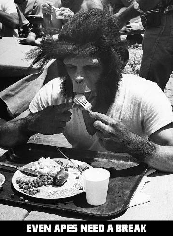 Even apes need a break (hasta los simios necesitan un respiro) Lámina