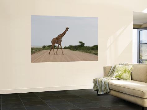 Giraffe Crossing the Road Bildtapet