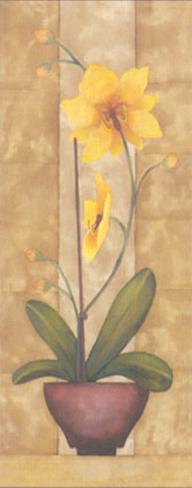 Melodic Orchid VI Art Print