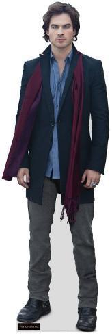 Vampire Diaries - Damon Salvatore Displays