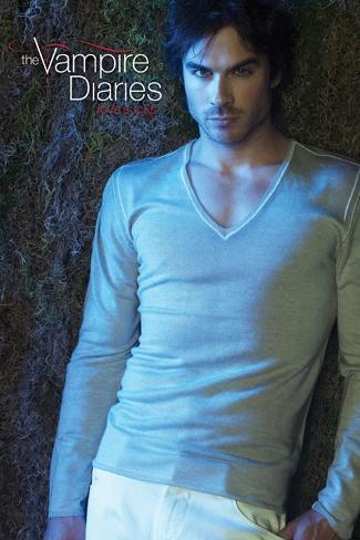 Vampire Diaries - Damon Poster