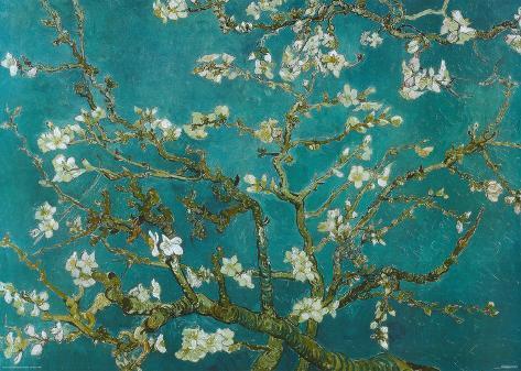 Van Gogh - Almond Blossom Giant Poster