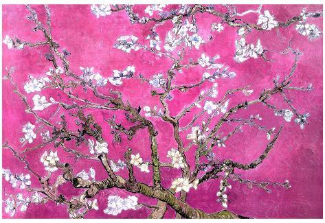 Van Gogh Almond Branches Pink Art Print Poster Poster