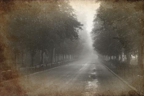 Retro Grunge Effect Photo of Tree Lined Avenue with Foggy and Misty Distance Photographic Print