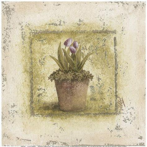 Tulipes Violettes Art Print