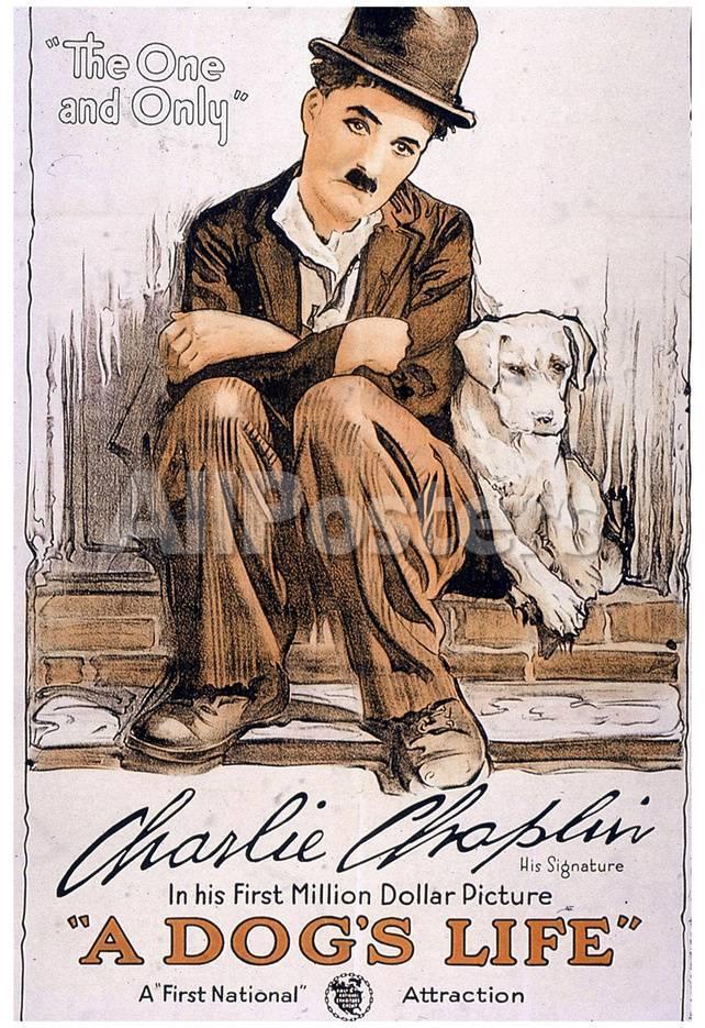 Vida de perro, película de Charlie Chaplin, lámina póster Láminas en ...