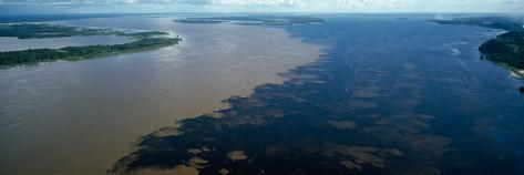 Poster Panorama Sunset over the Amazon Rainforest Manaus Brazil Fine Art Print