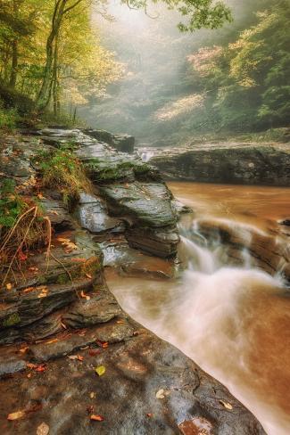 Misty Mountain Creekside, Catskills Valokuvavedos