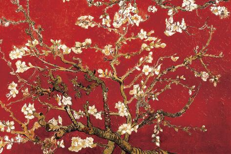 Almond Blossom - Red Poster