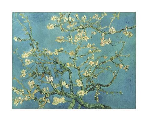Almond Branches in Bloom, San Remy, c.1890 Giclee Print