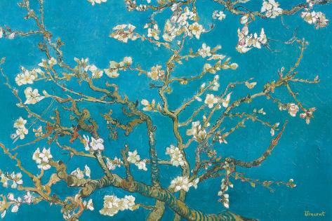 Almond Branches in Bloom, San Remy, c.1890 Stretched Canvas Print
