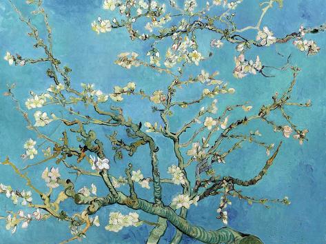Amandeltakken in bloei, Saint-Remy, ca. 1890 Kunstdruk