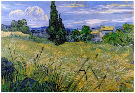 Vincent Van Gogh Green Wheat Field with Cypress Art Print Poster Poster